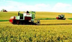 米袋子更丰菜篮子更优 湖北现代农业成绩